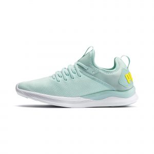 Puma  Women's Running Shoes IGNITE Flash evoKNIT