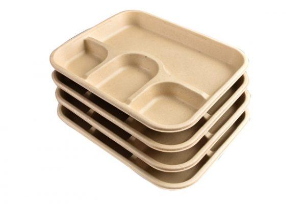 Chuk Chauka 4cp meal tray